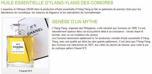 Menace sur l'Ylang-ylang des Comores