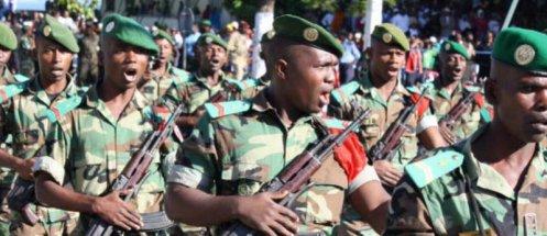 L'accord de défense entre la France et les Comores : Vers un transfert à la force africaine