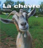 À Loudéac, un mahorais fumait sa chèvre... dans sa cave !