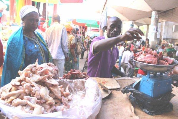 Des substances de salmonelle détectées dans une cargaison de poulets destinée aux Comores