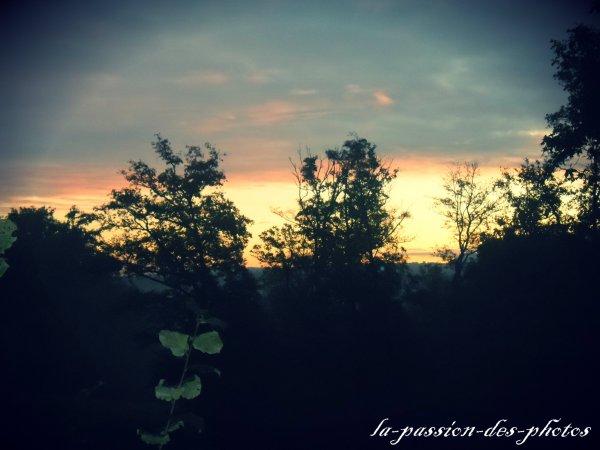 Photo 1.