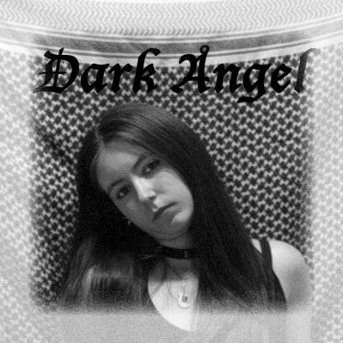 Le petit monde de Dark Angel