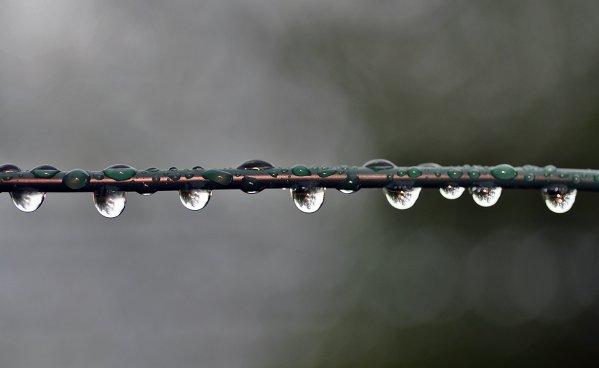 1266  *   Jour de pluie.