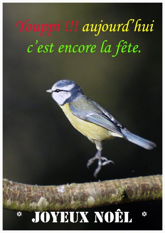 1779  *  youppiii, ce soir c'est la fête !!!