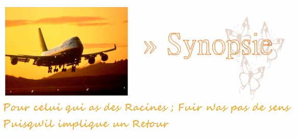 Synopsie »
