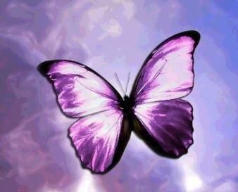Mon tatouage 20/11/2010