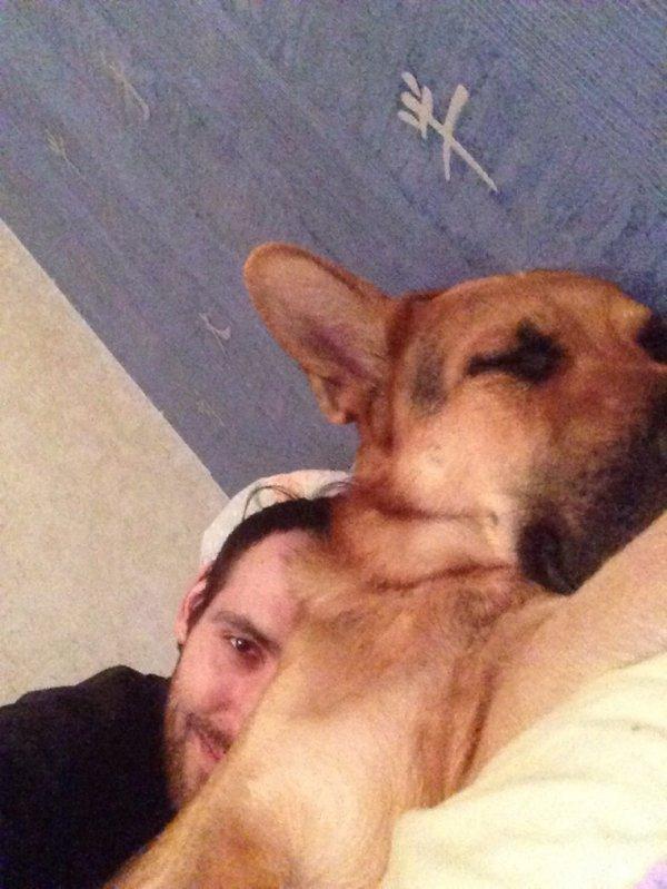 Voilà pourquoi je préfère les gros chiens