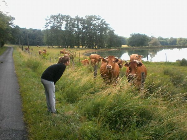 ouais je parle aux vaches :p