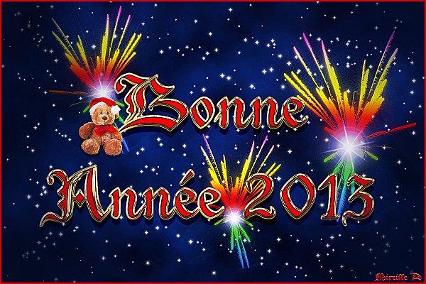 Bonne année 2013 :D