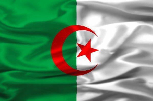 vive l'algérieeeee