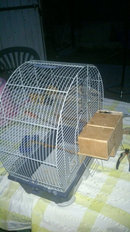 preparetion cage pour mes gould