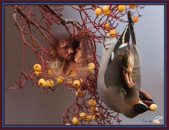 @ . Créa du mercredi  en vous souhaitant Bonne journée . @