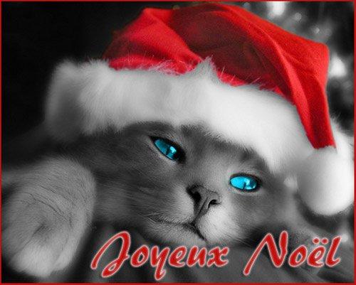 ***Joyeux Noël  mes amies et amis***