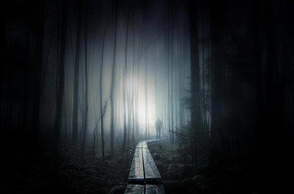 Nul ne peut atteindre l'aube sans passer par le chemin de la nuit