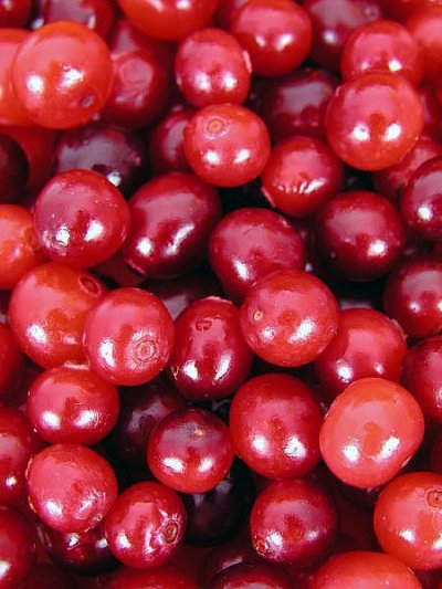 Hum... Cranberries...