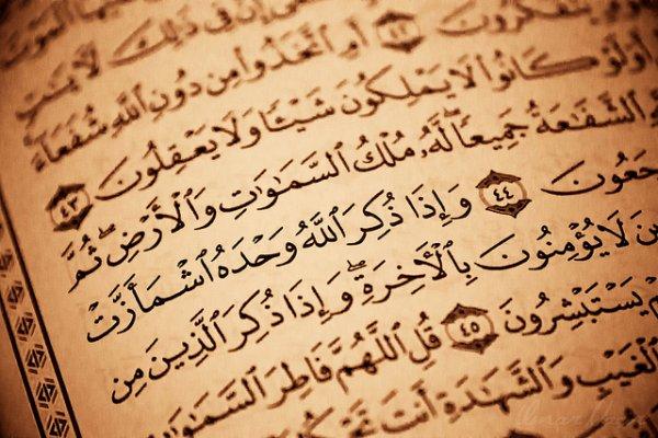 voici quelque sites pour lire en français ou en arabe et écoutez le saint coran