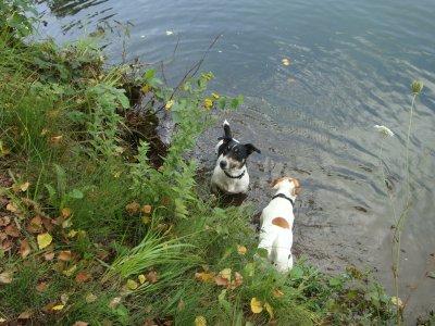 petite promenade à l'étang avec maman!!!