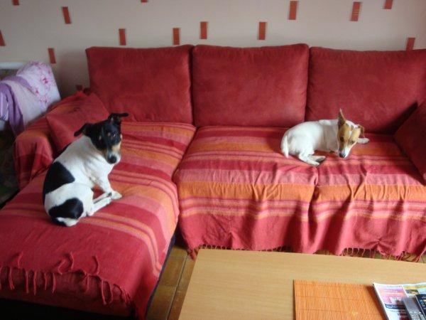 Grand canapé = chacun sa place!!!!