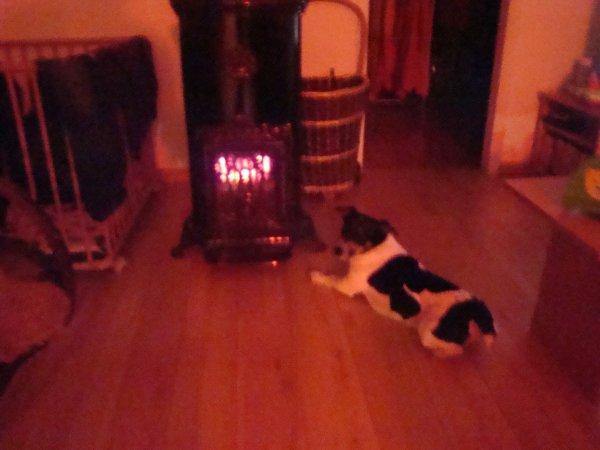 Gogo près du feu, il fait encore froid chez nous!!
