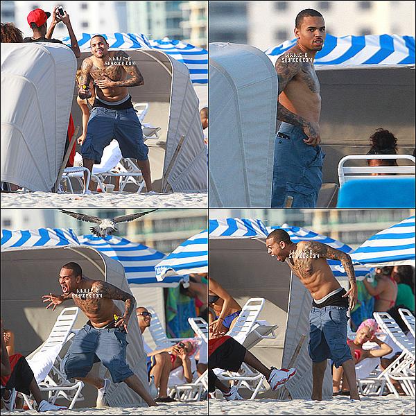 .  17 Février : Chris, photographié sur l'une des plage de Miami en compagnie de Karrueche. Un BOF pour moi..Votre avis ? .