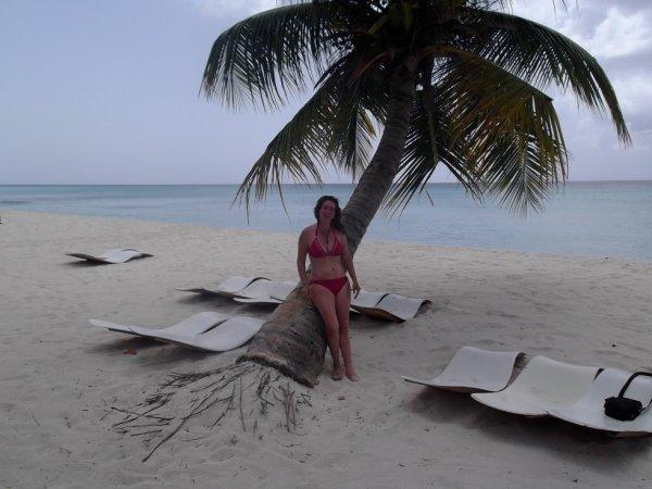sous un palmier en republique dominicaine