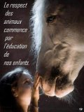 Photo de equinaturellement