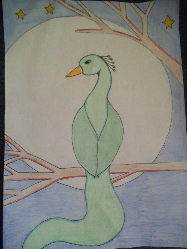 Oiseau émeraude