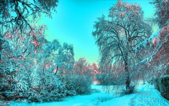 OS : Le temps d'un hiver