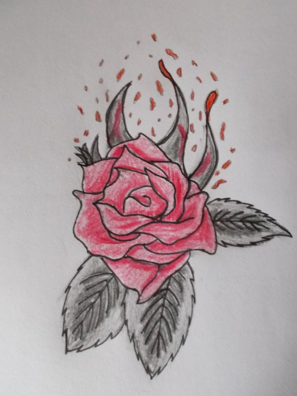 Rose ensanglantée