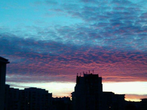 In the sky..