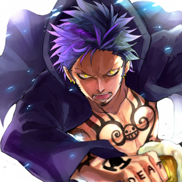 Trafalgar Law... (attention spoil)