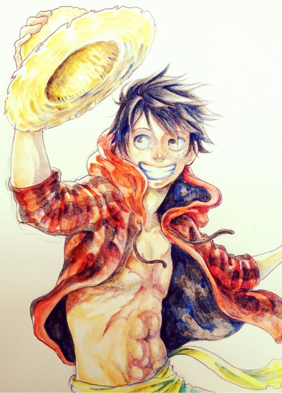 Album photo - spéciale Luffy