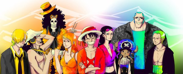 Album photo - spéciale groupe One piece
