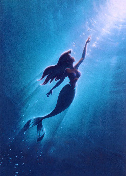 Album photo - spéciale Disney