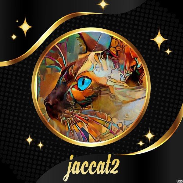 Cadeaux pour mon ami jaccat2