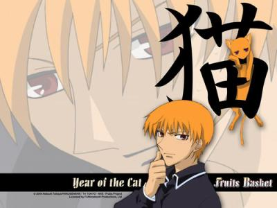 fruits basket - Kyo