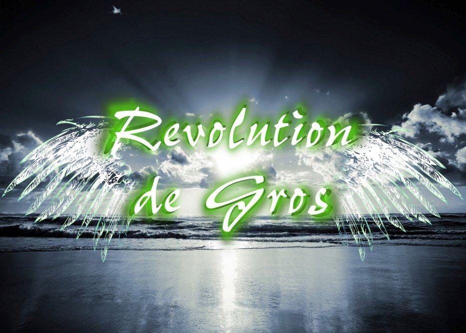 Revolution de Gros