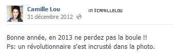 Bonne Année 2013 de Camille
