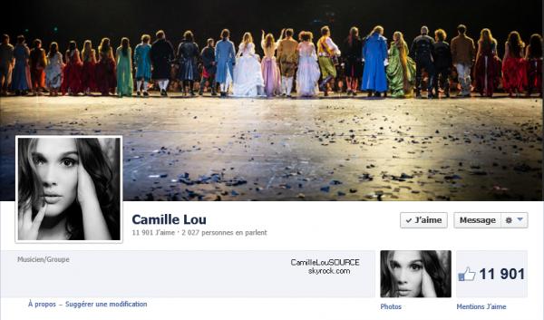 Un petit aperçu du mur Facebook de Camille