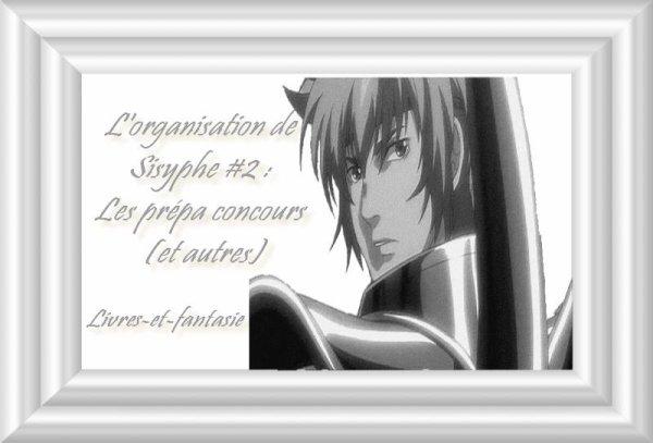 L'organisation de Sisyphe #2 : mon organisation pour la prépa concours