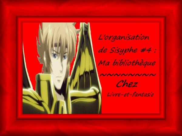 L'organisation de Sisyphe #4 : Ma bibliothèque