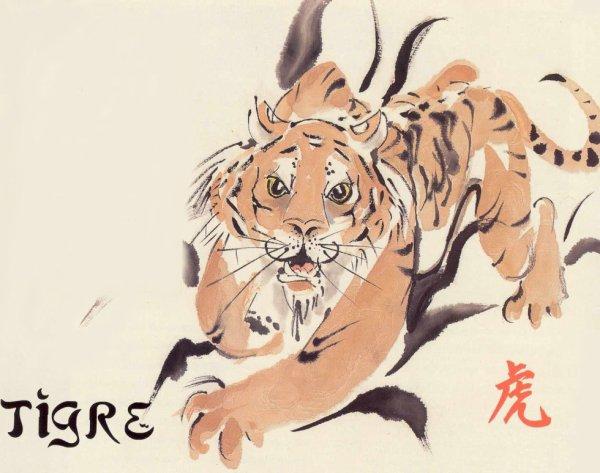 Signe 3 : Le tigre !!