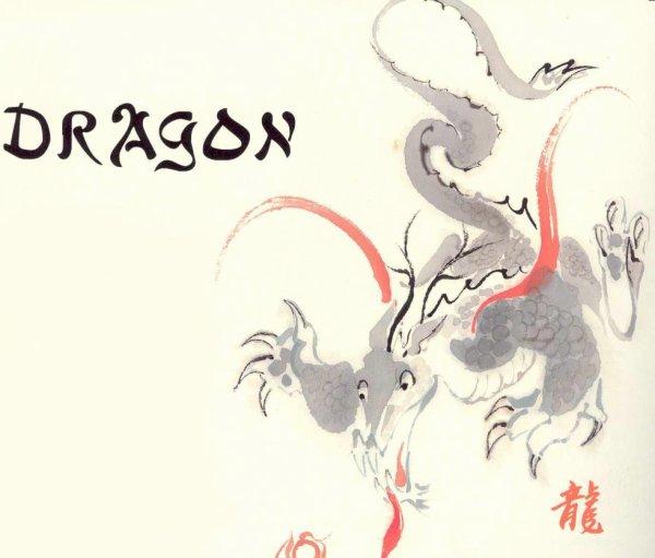 Signe 5 : Le dragon !! Pour toi Fall3n ;)