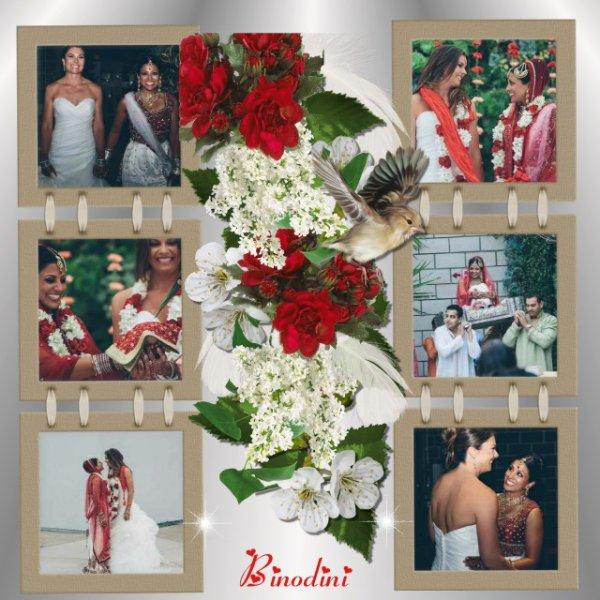 PREMIER  MARIAGE  LESBIEN  INDO - AMÉRICAIN  A  ÉMU   LES  INVITES
