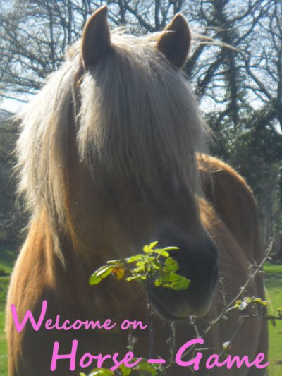 Welcome ♥ Horse-Game ©