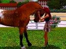 Photo de Sims-Du-Destin