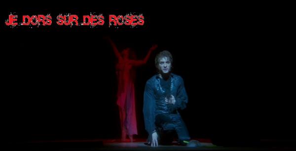 Je dors sur des roses