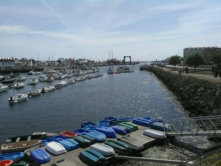 Coucou de Bretagne