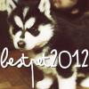 BestPet2012
