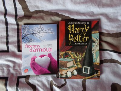 "Swap "" Harry Potter et son monde de sorciers """